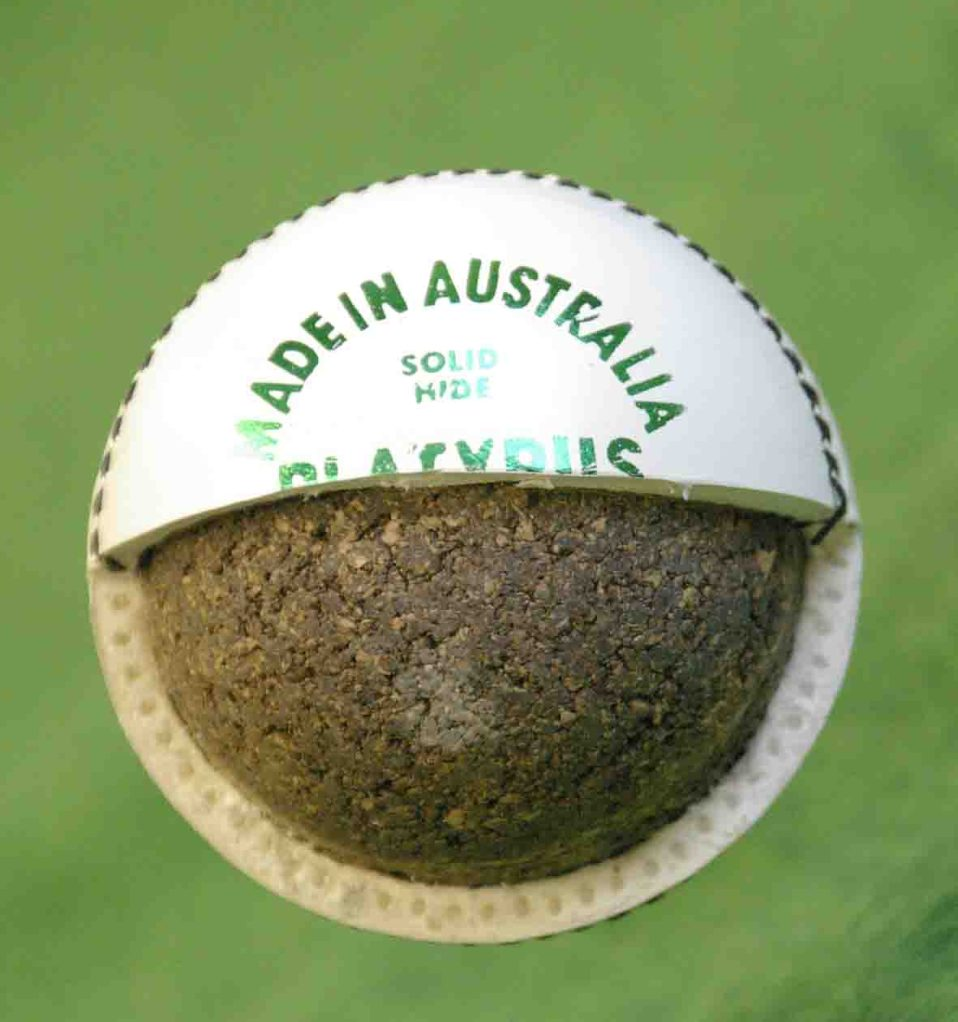 AFRIDI DIDN'T BITE THIS BALL, MANOJ PRABHAKAR DID